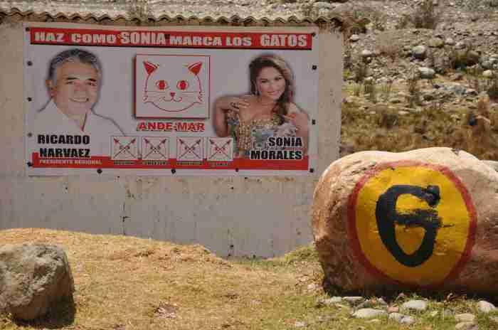 seriöse Wahlwerbung: Mach's wie Sonja, kreuz die Katzen an!